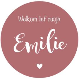 Geboortesticker full colour met de tekst 'welkom lief zusje'  type Emilie