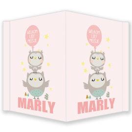 Geboortebord -  Geboortebord raam met schattige uiltjes type Marly