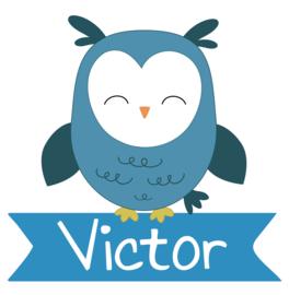 Geboortesticker jongen met een leuke uil type Victor