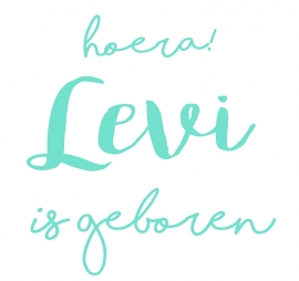 Geboortesticker type Levi