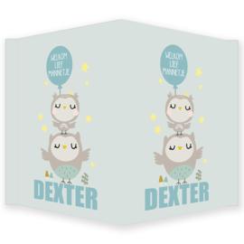 Geboortebord jongen - Geboortebord raam met leuke uiltjes type Dexter