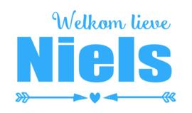 Geboortesticker met pijlen type Niels