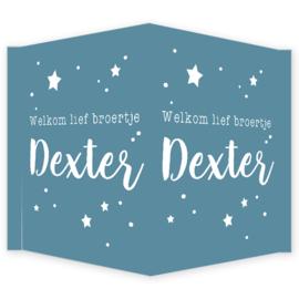 Geboortebord - Geboortebord raam met de tekst 'welkom lief broertje' type Dexter
