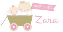 """Geboortesticker grote zus en de tekst """"welkom lief zusje"""" full colour type Zara"""