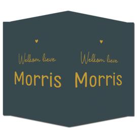 Geboortebord - Geboortebord donkerblauw met goudkleurige letters type Morris