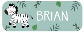 Naamstickers met een leuke zebra type Brian