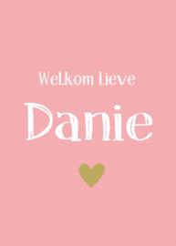 """Geboortebord - Geboortebord raam met de tekst """"welkom lieve"""" type Danie."""