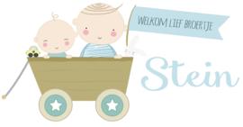 """Geboortesticker full colour type Stein met de tekst """"welkom lief broertje""""."""