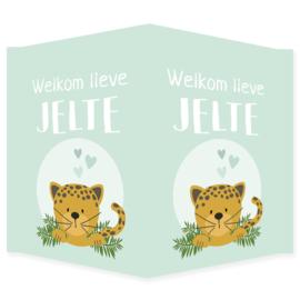 Geboortebord raam met een jaguar type Jelte
