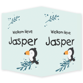 Geboortebord - Geboortebord raam met een toekan type Jasper