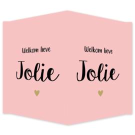 Geboortebord - Geboortebord raam met een hartje type Jolie