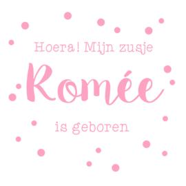 Geboortesticker met de tekst 'Welkom lief zusje' type Romée