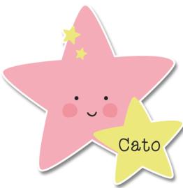 Naamstickers in vorm met een lieve ster
