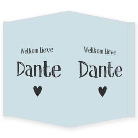 Geboortebord jongen - Geboortebord raam lichtblauw met een hartje type Dante.