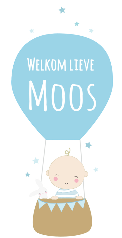 Geboortesticker met luchtballon en sterretjes full colour type Moos