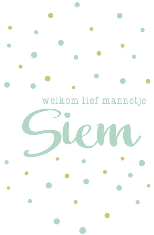 Geboortesticker 'welkom lief mannetje' type Siem