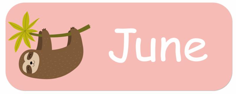 Naamstickers kind met een luiaard type June