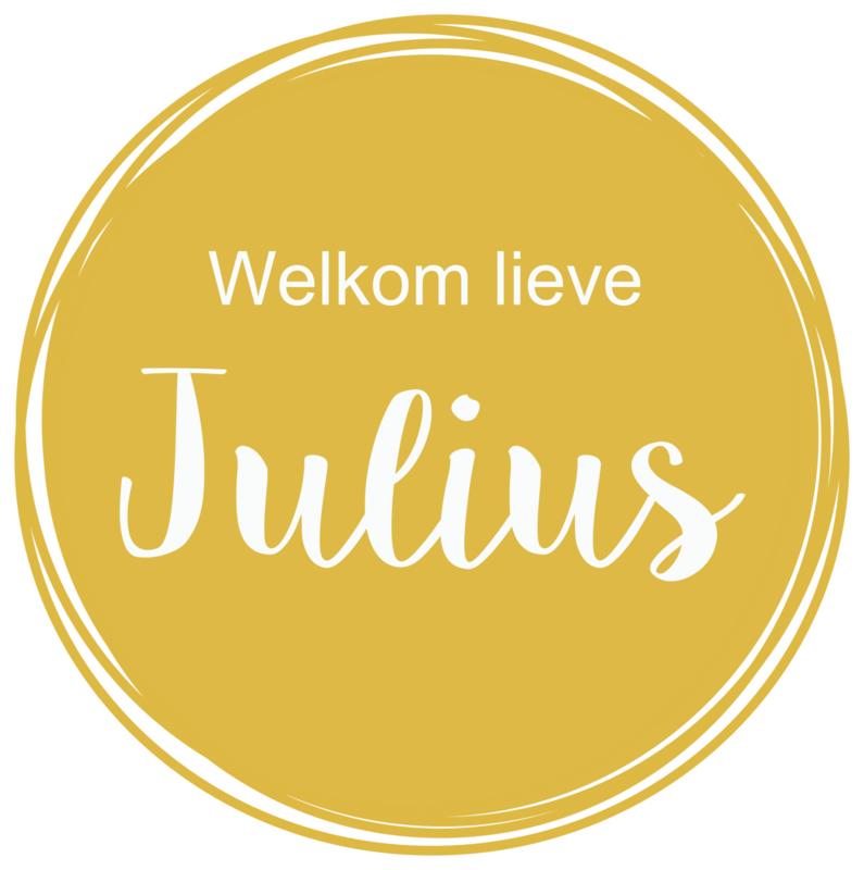 Geboortesticker in okergeel type Julius