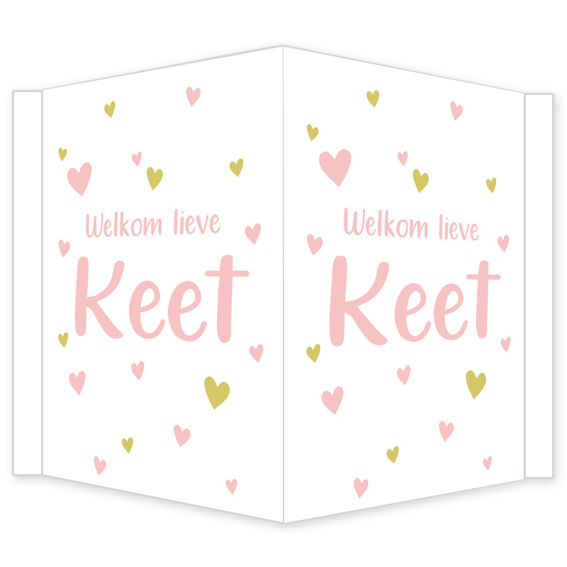 Geboortebord - Geboortebord raam met roze en goudkleurige hartjes type Keet