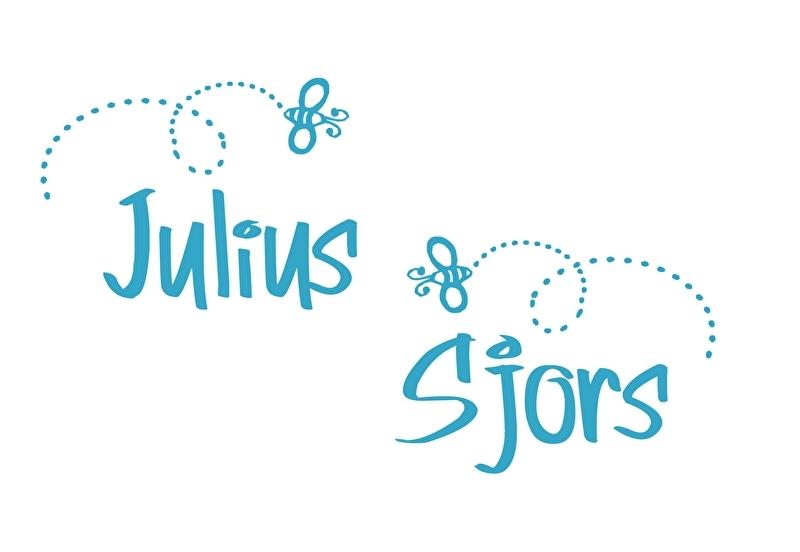 Geboortesticker  type Julius en Sjors
