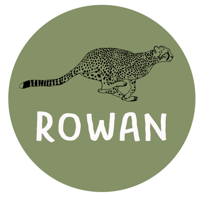 Geboortesticker full colour cheeta type Rowan