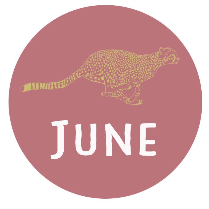 Geboortesticker met een gouden cheeta type June