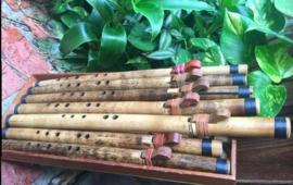 Erik the Flutemaker Kiowa Inspired Love Flute