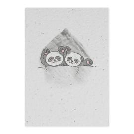 Groeikaart tweeling pandas