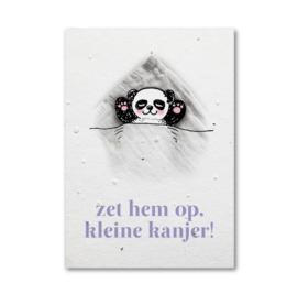 Groeikaart kleine kanjer - panda