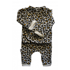 Prematuur setje leopard okergeel