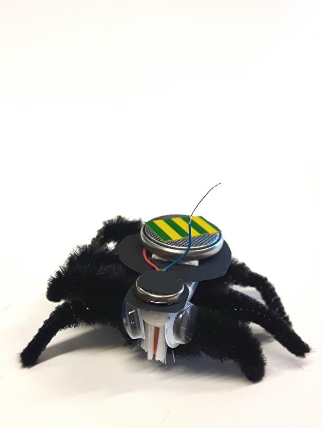 Elektronica - Kriebelbeestje