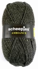 Scheepjes - Ambiance - Kleur 101 waarvan 1 met een ander verfbad