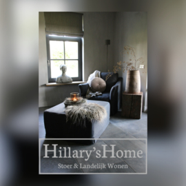 Hillary's Home