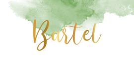 Kaartje Bartel