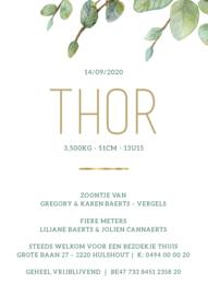 Kaartje Thor