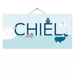 Kaartje Chiel