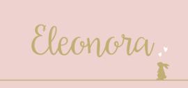 Kaartje Eleonora