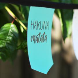 Tuinslinger - Hakuna Matata (mix)