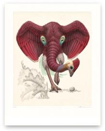 Dromopterix Elephoenicus (Print)