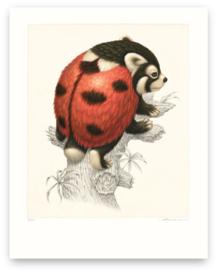 Coccinellursus Hexapedus (Print)