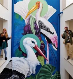 Stork Oasis