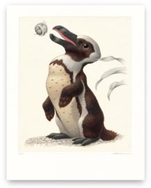 Pinguilagus Pseudopticus (Print)