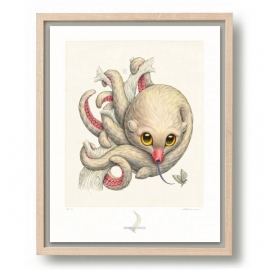 Octopossum Leucostolum (framed)
