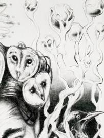 Smoking Owls