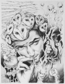 Smoking Owls - fine art print