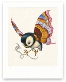 Psychornis Leucopsis (print)