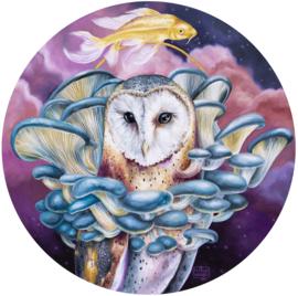 Oyster Owl - fine art print