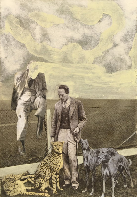 Untitled 2018 (dogs and cheetah)