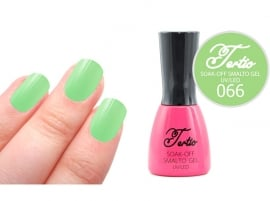 #66 Groen/Mint