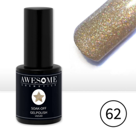 #62 Champagne Multi Glitter ( chique)